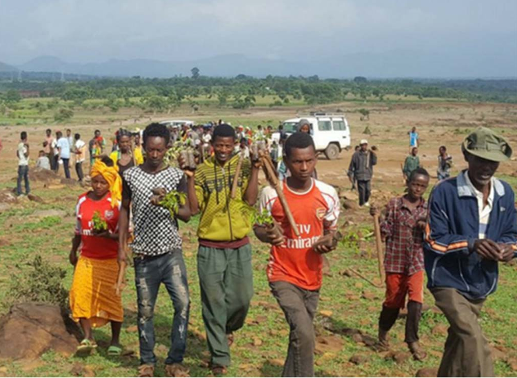 Tree Planting Day July 2019, Ethiopia