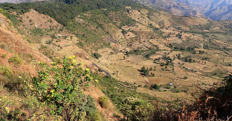 Typical landscape in the Simien Mountains Region, Northern Ethiopia.